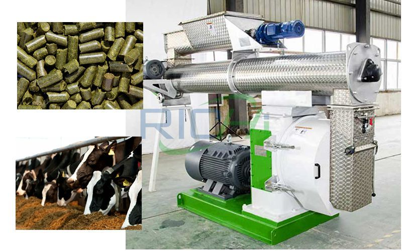 Cattle Feed Pellet Machine: How to make cattle feed