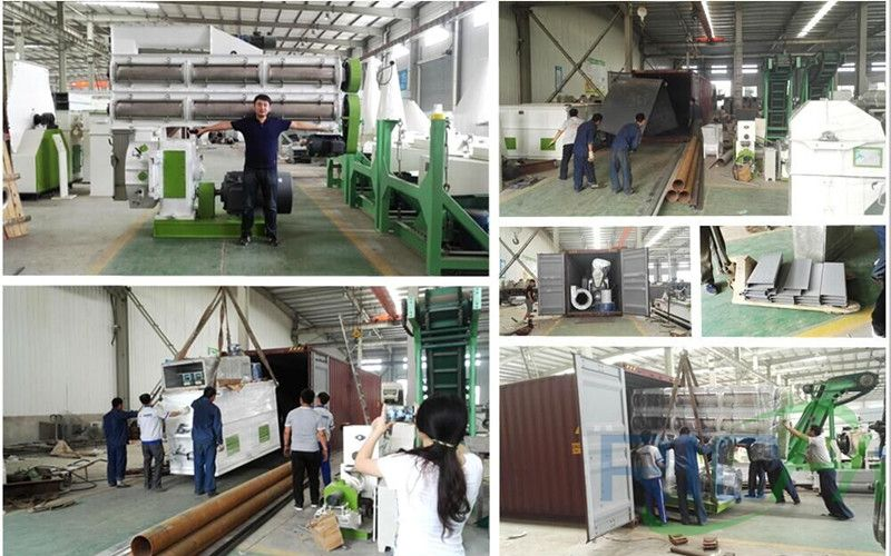 Deliver 10T/H Animal Feed Pellet Mill To Mauritania