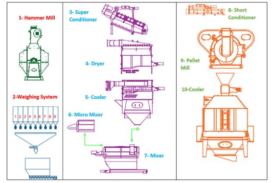 Proposed new design for the feed pellet production line