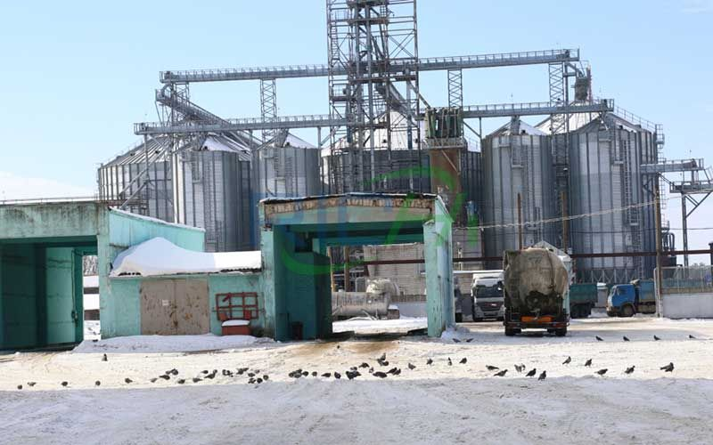 Large-scale poultry feed pellet production line project