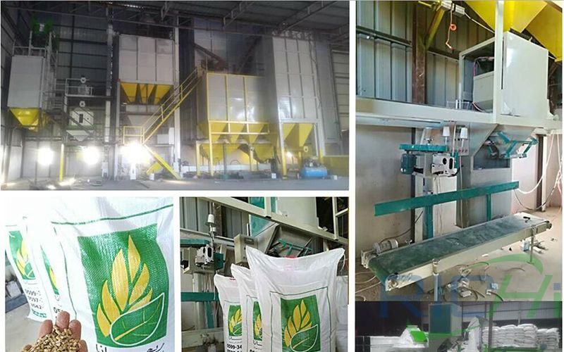 Palestine 4T/H Alfalfa feed pellet production line project