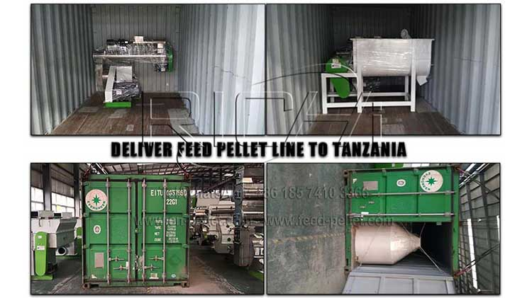 Tanzania 4-5T/H + 3-4T/H feed production line