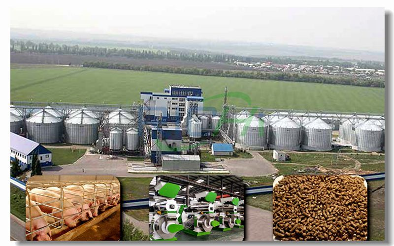 80 Tons/hour Large-scale High-end Pig Feed Pellet Production Line Project
