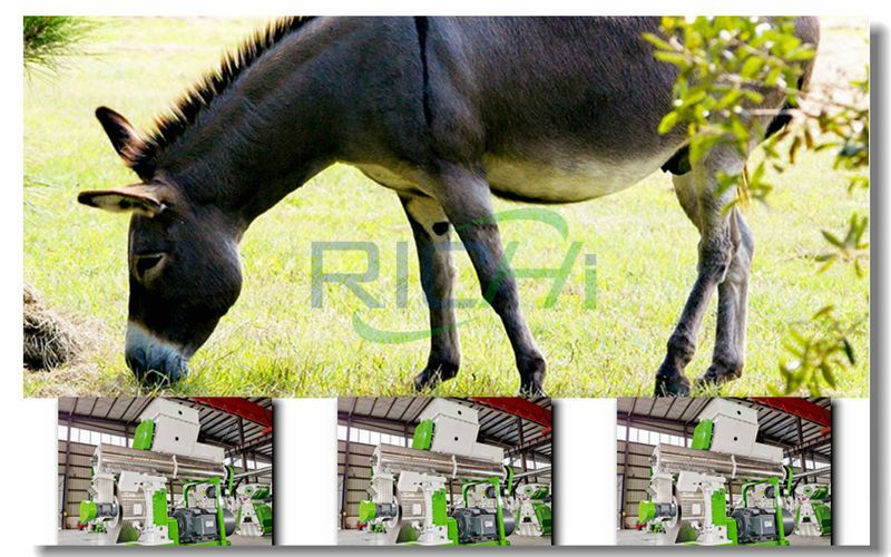 Donkey and feed pellet machine