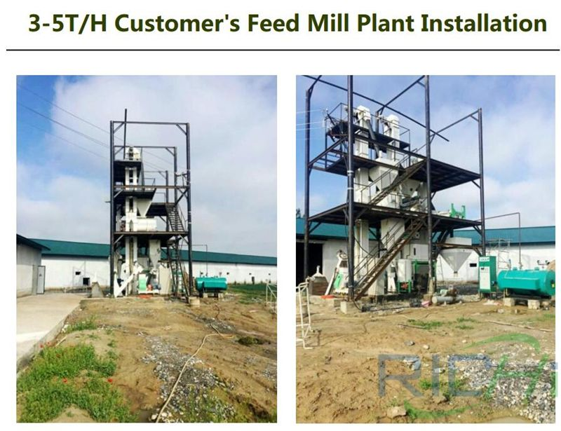 4tph chicken feed pellet line site installation drawing