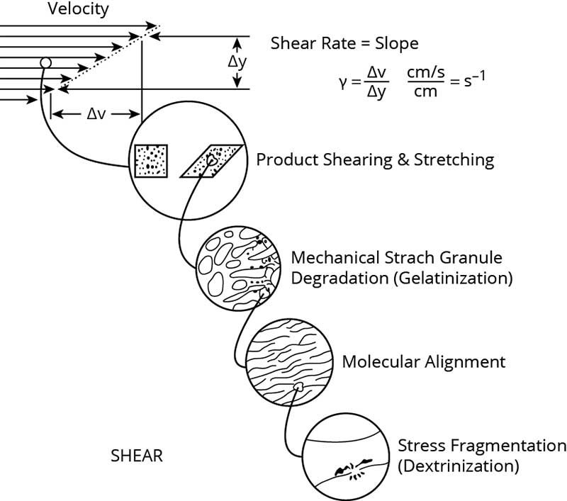 The role of shear in extrusion cooking