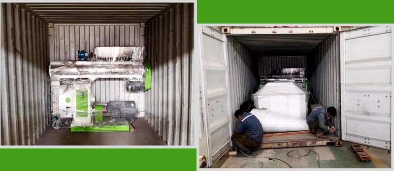 3-4Ton/Hour feed pellet machine delivery to Uzbekista