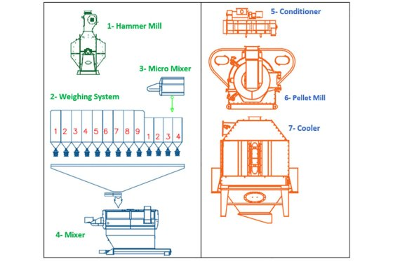Conventional design for feed processing line