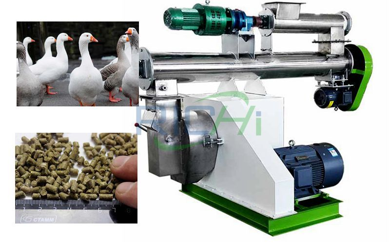 Goose Feed Pellet Machine and Goose
