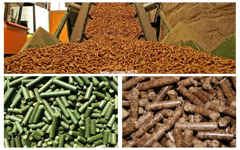 Crusher And Pellet Mill Is Inseparable For The Production Of Hemp Grass Pellets